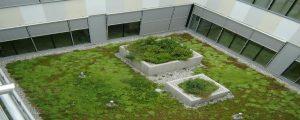sestava zelne strehe
