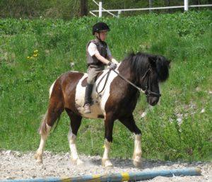 Jahanje konja v Sloveniji