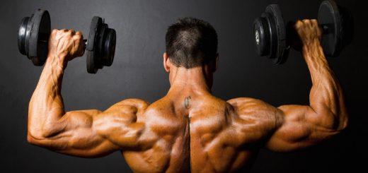 proteini za masu mišića