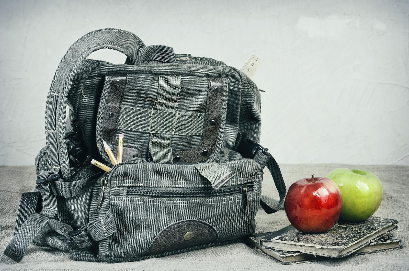 školske torbe ergonomske